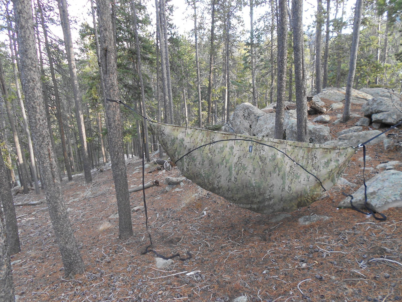 blackbird  u0026 traveler accessories hiking hammocks   warbon    accessories   blackbird  u0026 traveler  rh   warbon outdoors